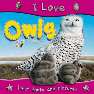 I Love Owls - I Love S. (Paperback)