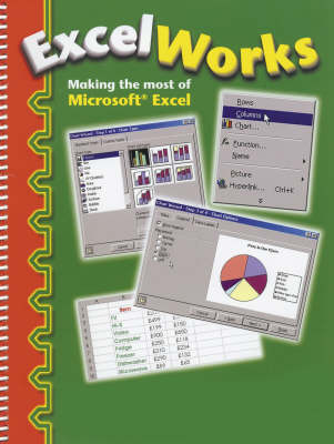 Excel Works: Making the Most of Microsoft Excel (Spiral bound)