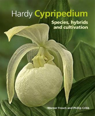 Hardy Cypripedium: Species, Hybrids and Cultivation (Hardback)