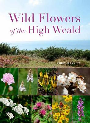 Wild Flowers of the High Weald (Paperback)