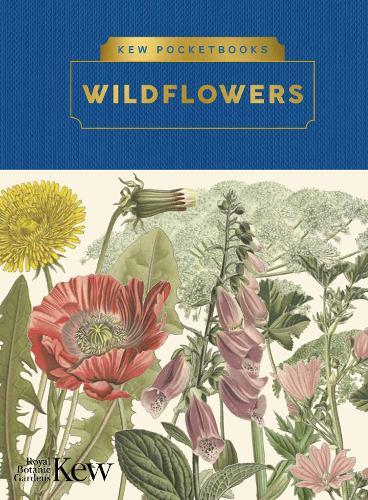 Kew Pocketbooks: Wildflowers - Kew Pocketbooks (Hardback)