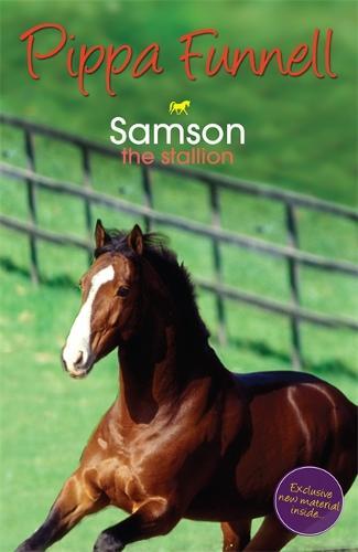 Tilly's Pony Tails: Samson: Book 4 - Tilly's Pony Tails (Paperback)