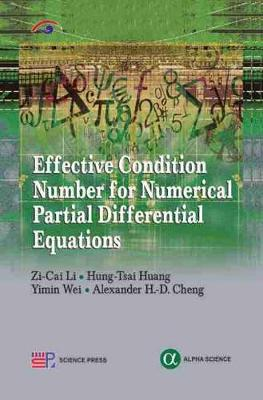 Effective Condition Number for Numerical Partial Differential Equations (Hardback)