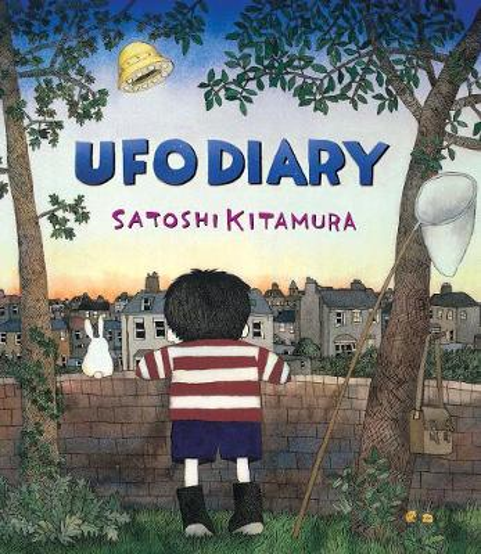 UFO Diary (Paperback)
