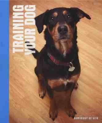 Training Your Dog (Hardback)