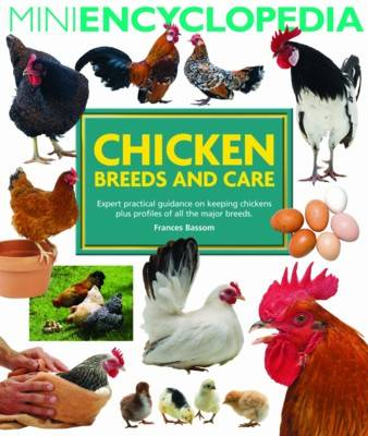 Mini Encyclopedia of Chicken Breeds and Care (Paperback)