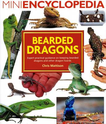 Mini Encyclopedia of Bearded Dragons (Paperback)