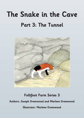 The Snake in the Cave: The Tunnel Part 3 - Follifoot Farm Series 3 3 (Paperback)