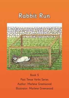 Rabbit Run (Paperback)