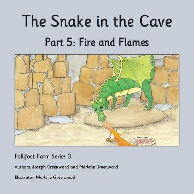 Fire and Flames - The Snake in the Cave 5 (Paperback)
