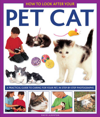 How to Look After Your Pet Cat (Hardback)