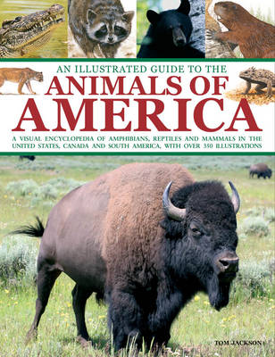An Illustrated Guide to the Animals of America: a Visual Encyclopedia of Amphibians, Reptiles and Mammals in the United States, Canada and South America, with Over 350 Illustrations (Paperback)