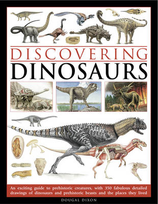 Discovering Dinosaurs (Paperback)
