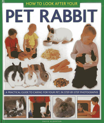 How to Look After Your Pet Rabbit (Hardback)