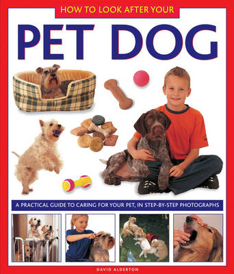 How to Look After Your Pet Dog (Hardback)