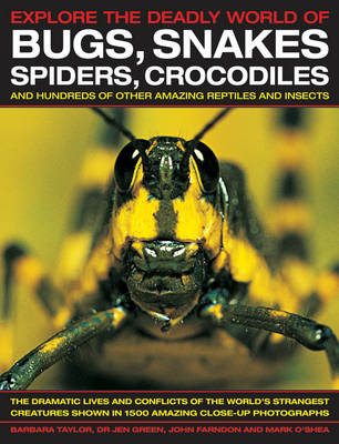 Explore the Deadly World of Bugs, Snakes, Spiders, Crocodiles (Paperback)