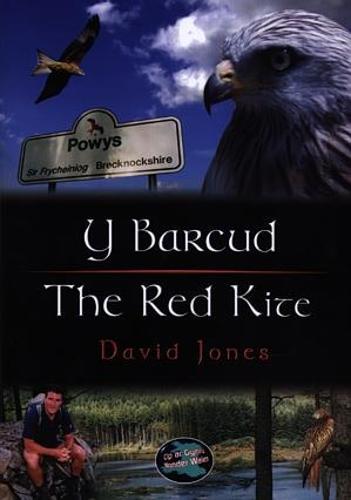 Cyfres Cip ar Gymru / Wonder Wales: Barcud, Y / Red Kite, The (Paperback)