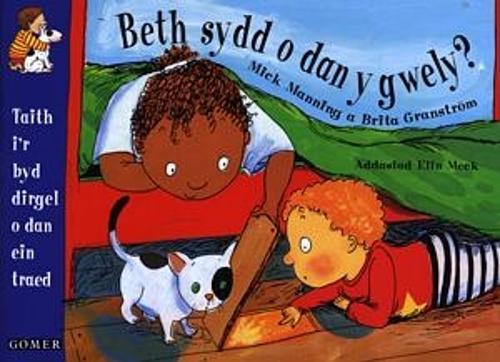 Beth sydd o dan y Gwely? (Llyfr Mawr) (Paperback)