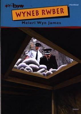 Wyneb Rwber - Cyfres I'r Byw S. (Paperback)