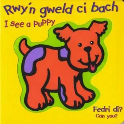 Rwy'n Gweld Ci Bach / I See a Puppy (Hardback)