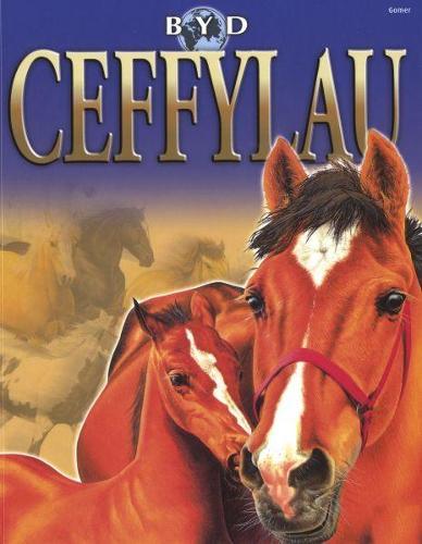 Byd Ceffylau (Paperback)
