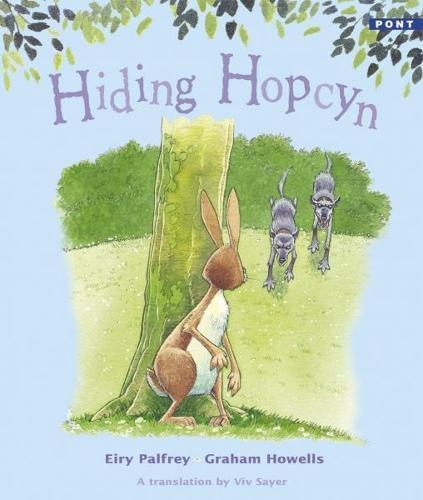 Hiding Hopcyn (Paperback)