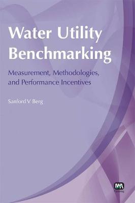 Water Utility Benchmarking (Paperback)