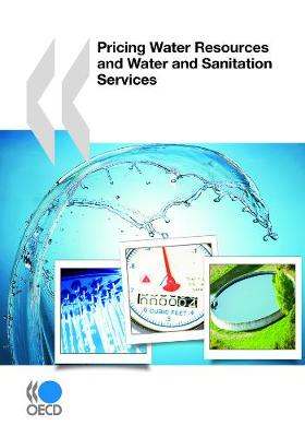 Pricing Water Resources and Water and Sanitation Services - OECD Report Series (Paperback)