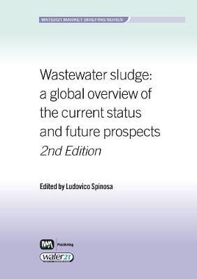 Wastewater Sludge - Water21 Market Briefing Series (Paperback)
