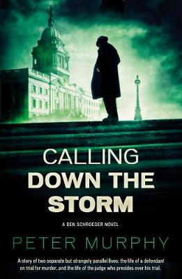 Calling Down The Storm: The Fifth Ben Schroeder Legal Thriller (Paperback)