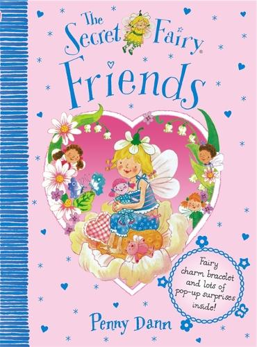 The Secret Fairy: Friends - The Secret Fairy (Hardback)