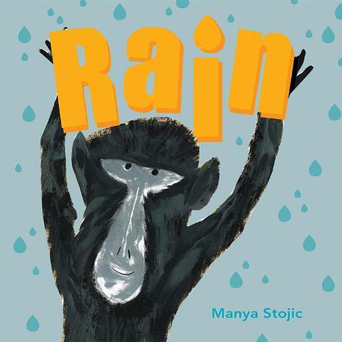 Rain (Paperback)