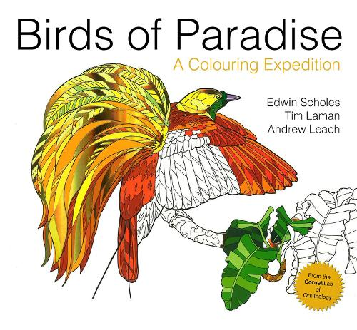 Birds of Paradise: A colouring expedition - Colouring Books (Paperback)