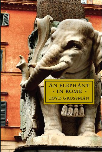 An Elephant in Rome: Bernini, The Pope and The Making of the Eternal City (Hardback)