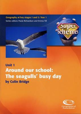 Around Our School: The Seagulls' Busy Day - Super Schemes S. 1