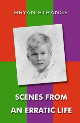 Scenes From an Erratic Life (Paperback)