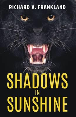 Shadows in Sunshine (Paperback)