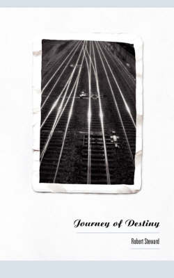 Journey of Destiny (Paperback)