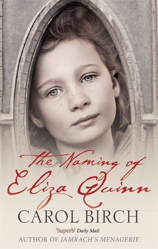 The Naming Of Eliza Quinn (Paperback)