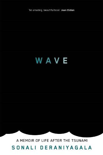 The Wave: A Memoir of Life After the Tsunami (Paperback)