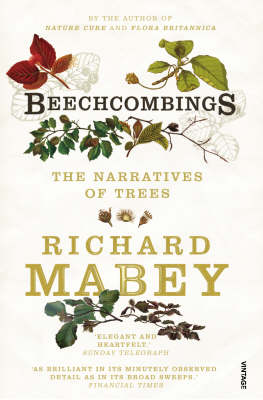 The Ash and The Beech: The Drama of Woodland (Paperback)