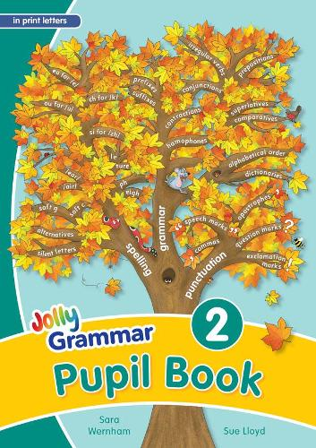 Grammar 2 Pupil Book: In Print Letters (British English edition) (Paperback)