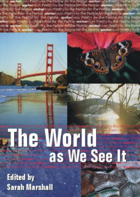 The World as We See it (Paperback)