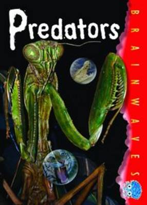 Predators - Brainwaves (B)