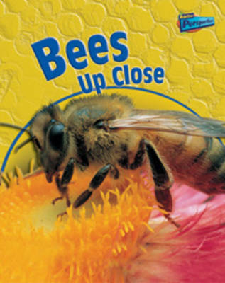 Bees Up Close - Raintree Perspectives: Minibeasts Up Close (Paperback)