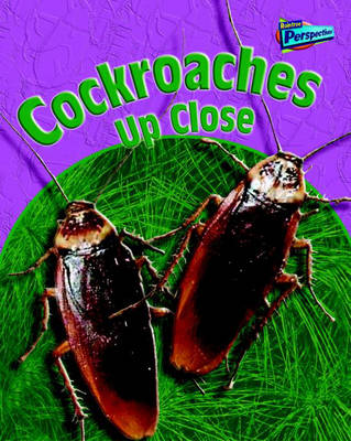 Cockroaches Up Close - Raintree Perspectives: Minibeasts Up Close (Paperback)