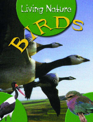 JR NATURE GUIDES BIRDS (Paperback)