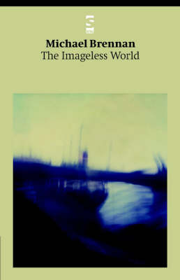 The Imageless World - Salt Modern Poets (Paperback)