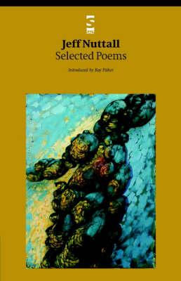 Selected Poems - Salt Modern Poets (Paperback)