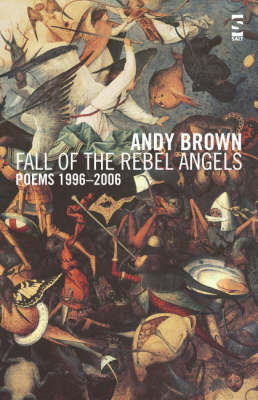 Fall of the Rebel Angels: Poems 1996-2006 - Salt Modern Poets (Paperback)